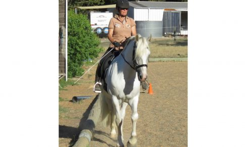 The Joy and frustration of Lateral Work-part 4