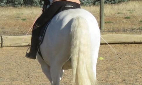 The Joy & frustration of Lateral Work -part 2